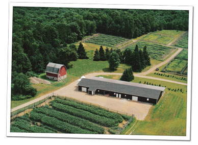 Aerial view of brooding facility and flight pens at Krug's